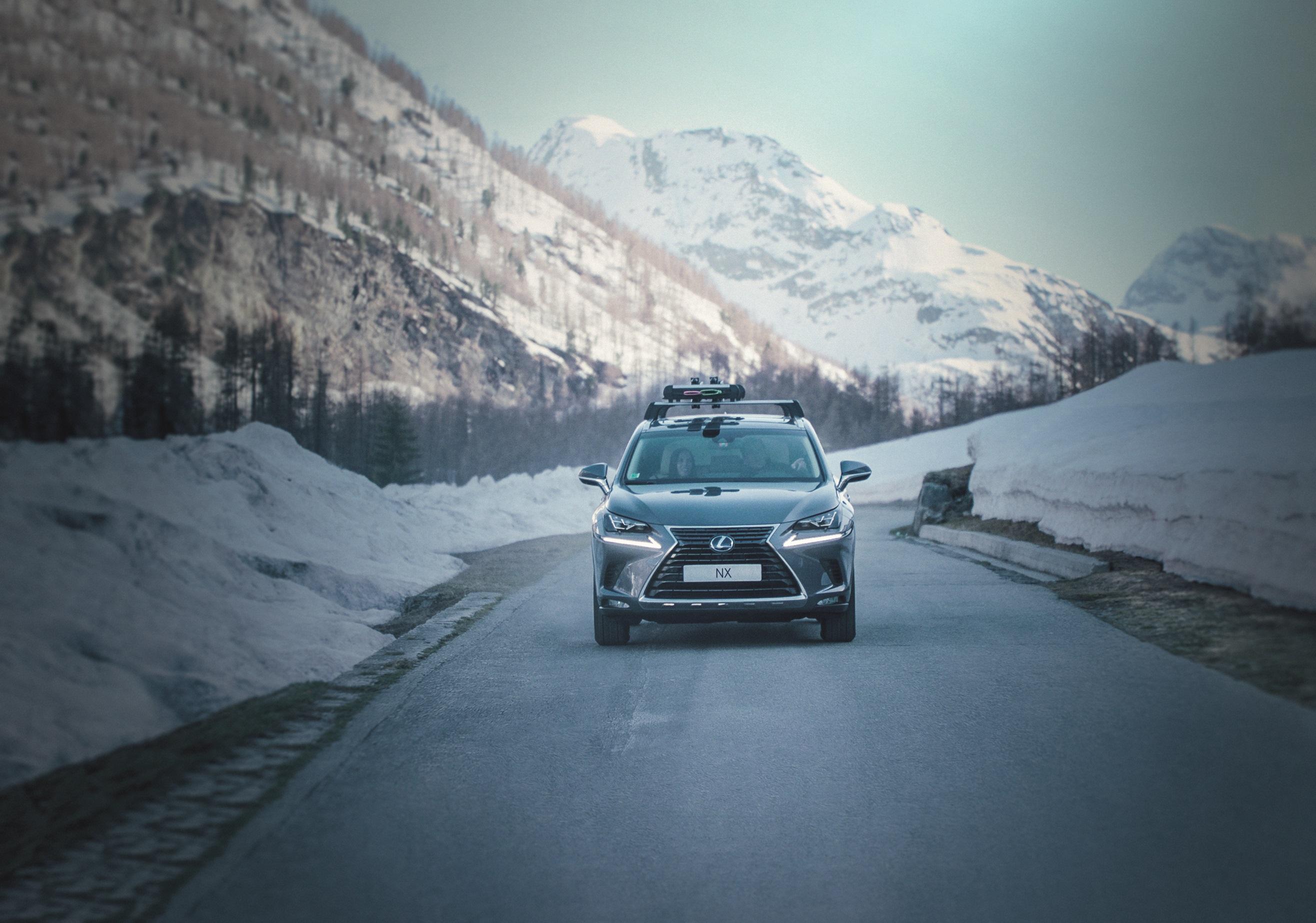 Lexus winter check 2018 hero