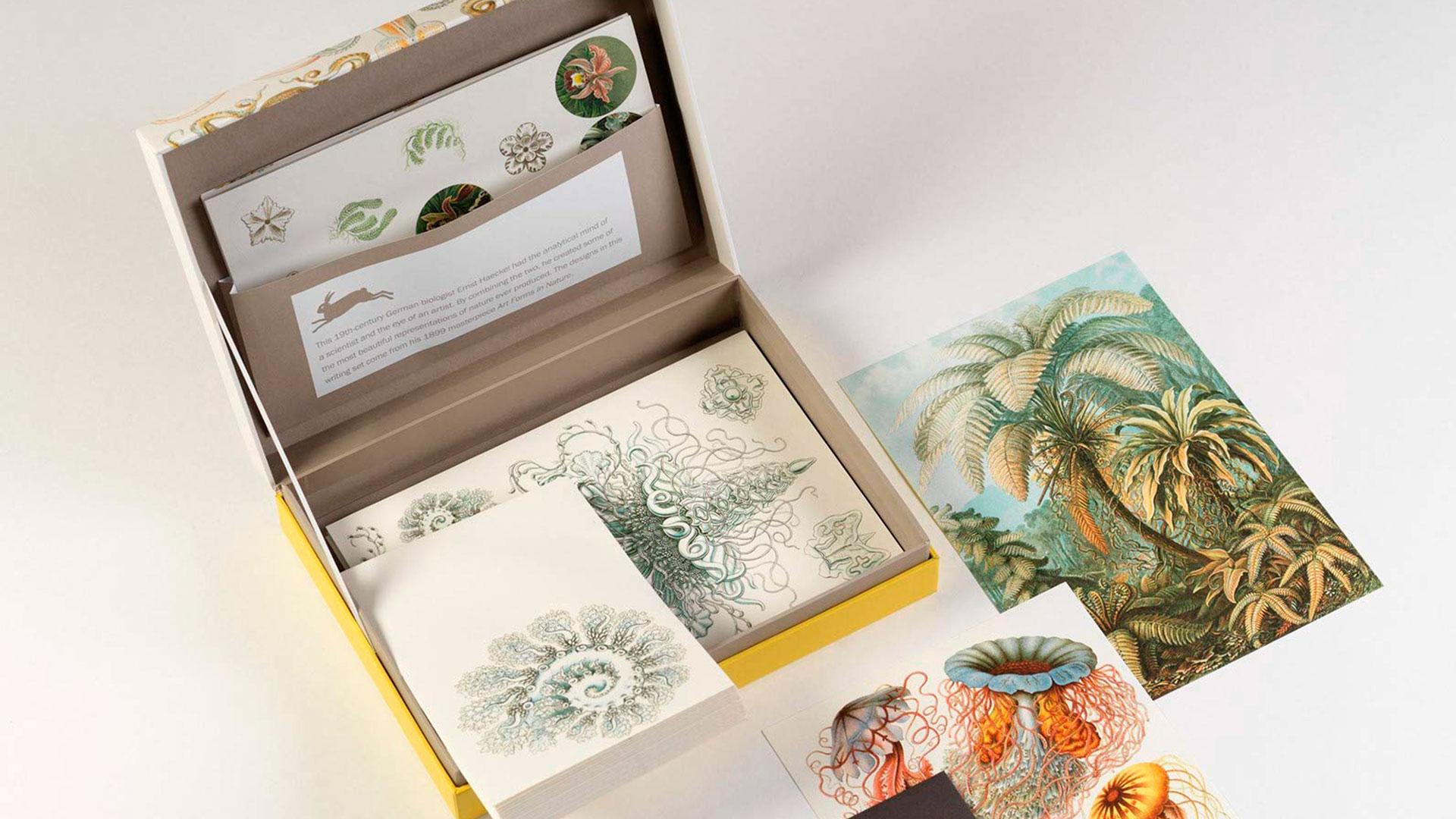 Imagen de productos de la tienda de decoración Batavia