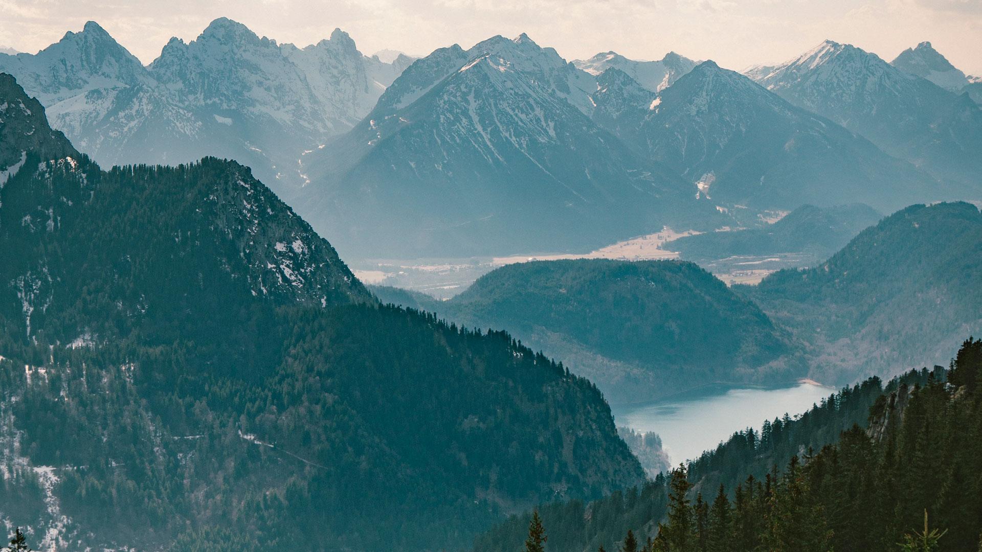 Imágenes de 5 bosques