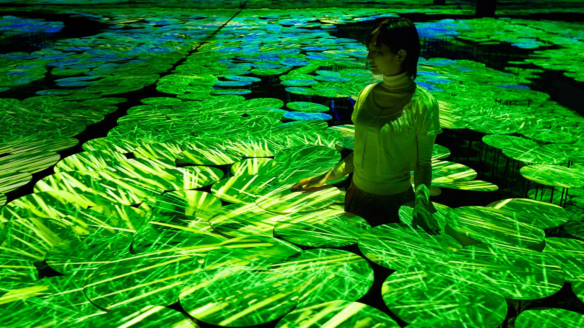 Campos de arroz tecnológicos hero asset