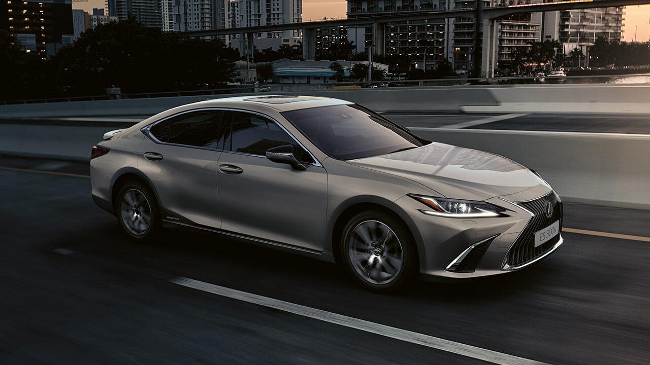 Lexus business how business plus wroks next steps