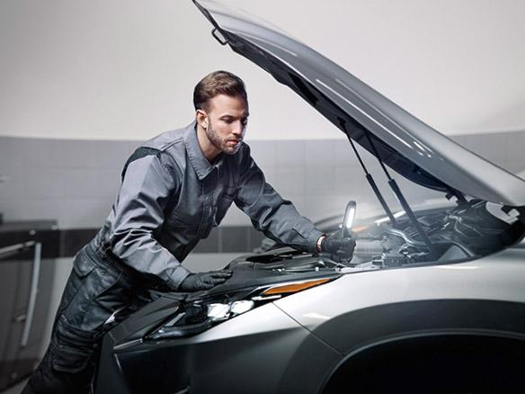 2020 019 Houd uw Lexus in topconditie met Lexus Homecare landscape