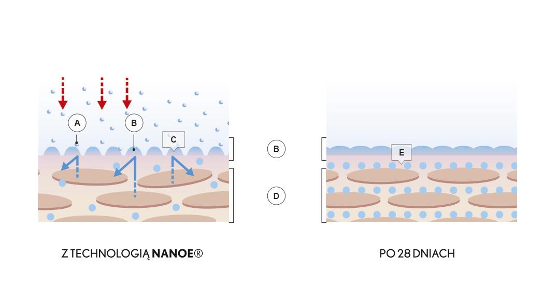 Nanoe Skóra Picture desktop